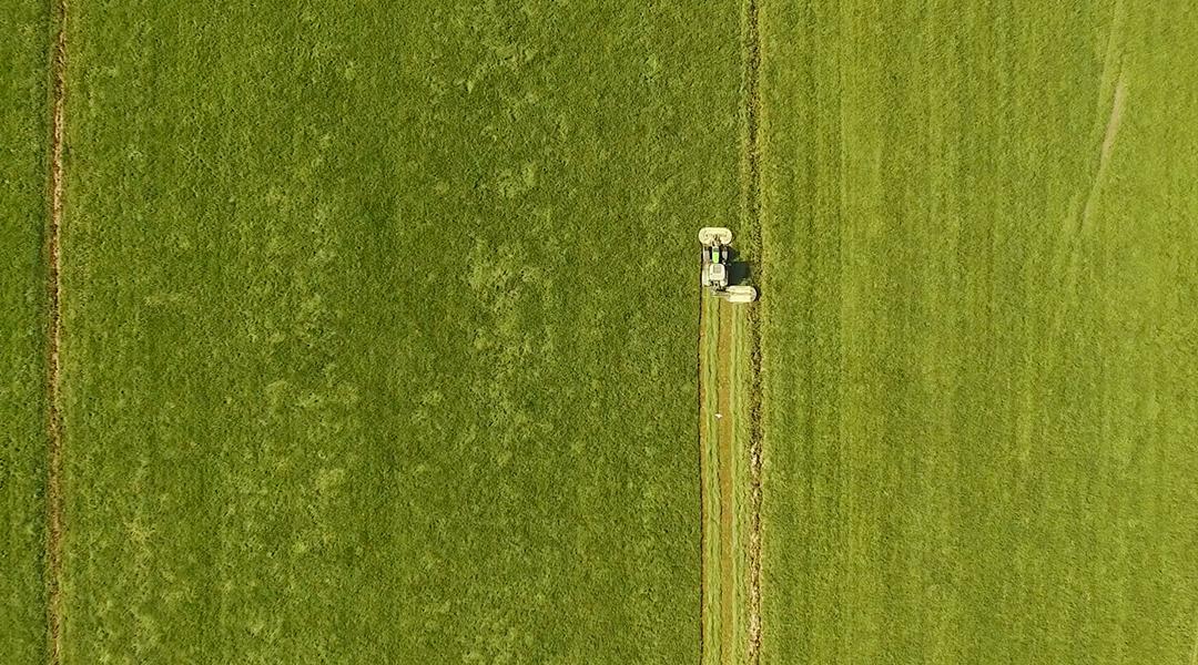 Speers Hoff Traktor bei der schonenden Ernte des nährstoffreichen Heus